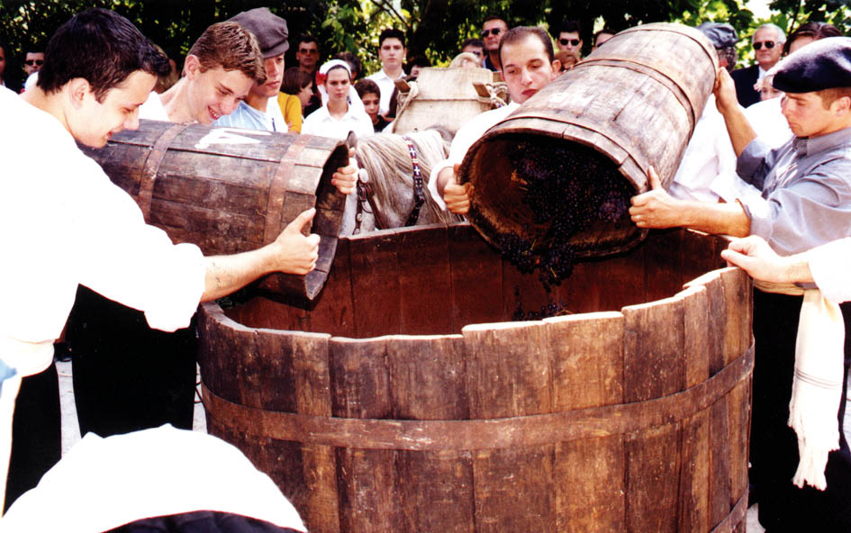Traditional wine processing