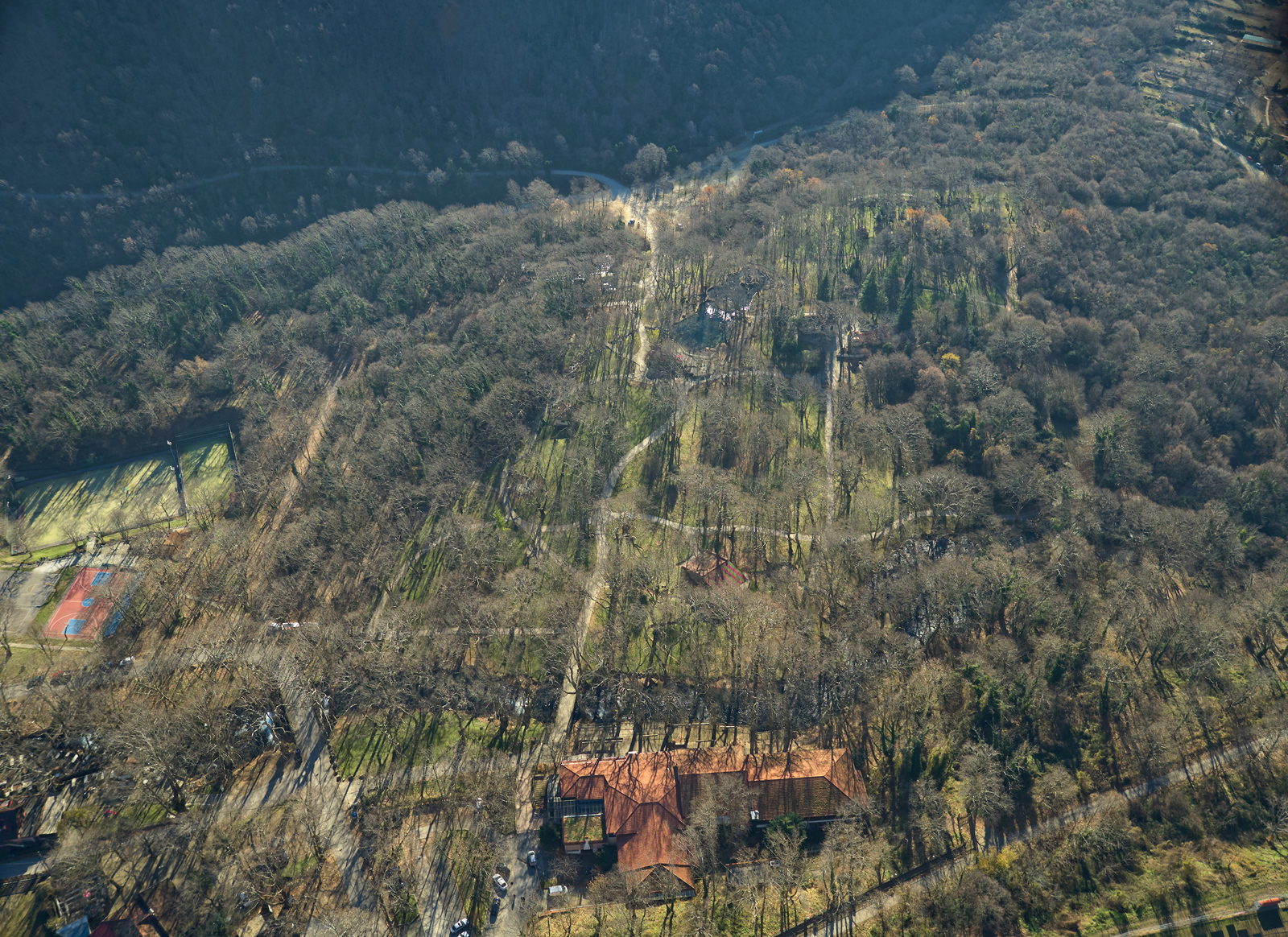 Saint Nicholas' Grove Naoussa from the air in autumn