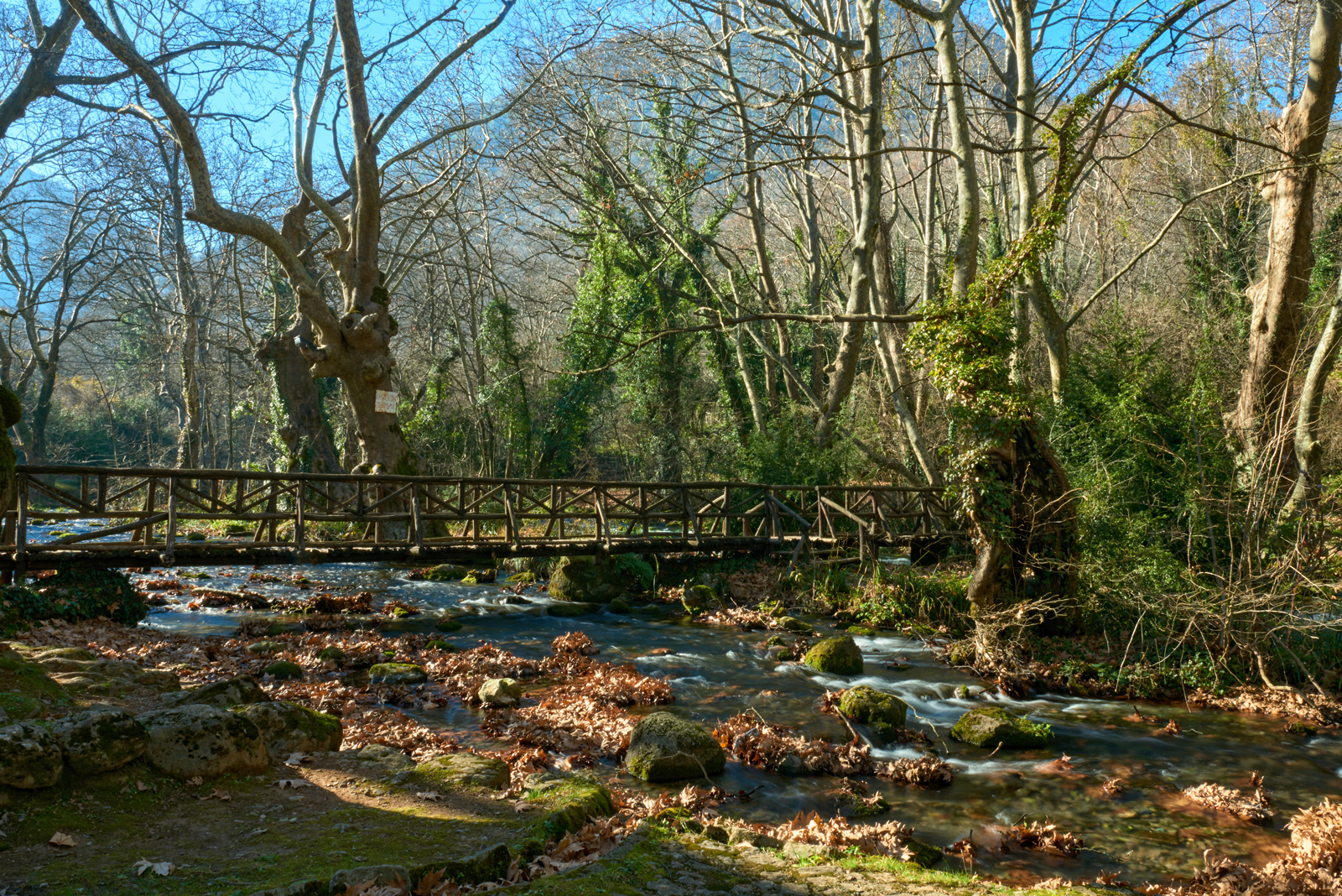 A wooden bridge at Saint Nicholas' Grove Naoussa in Autumn