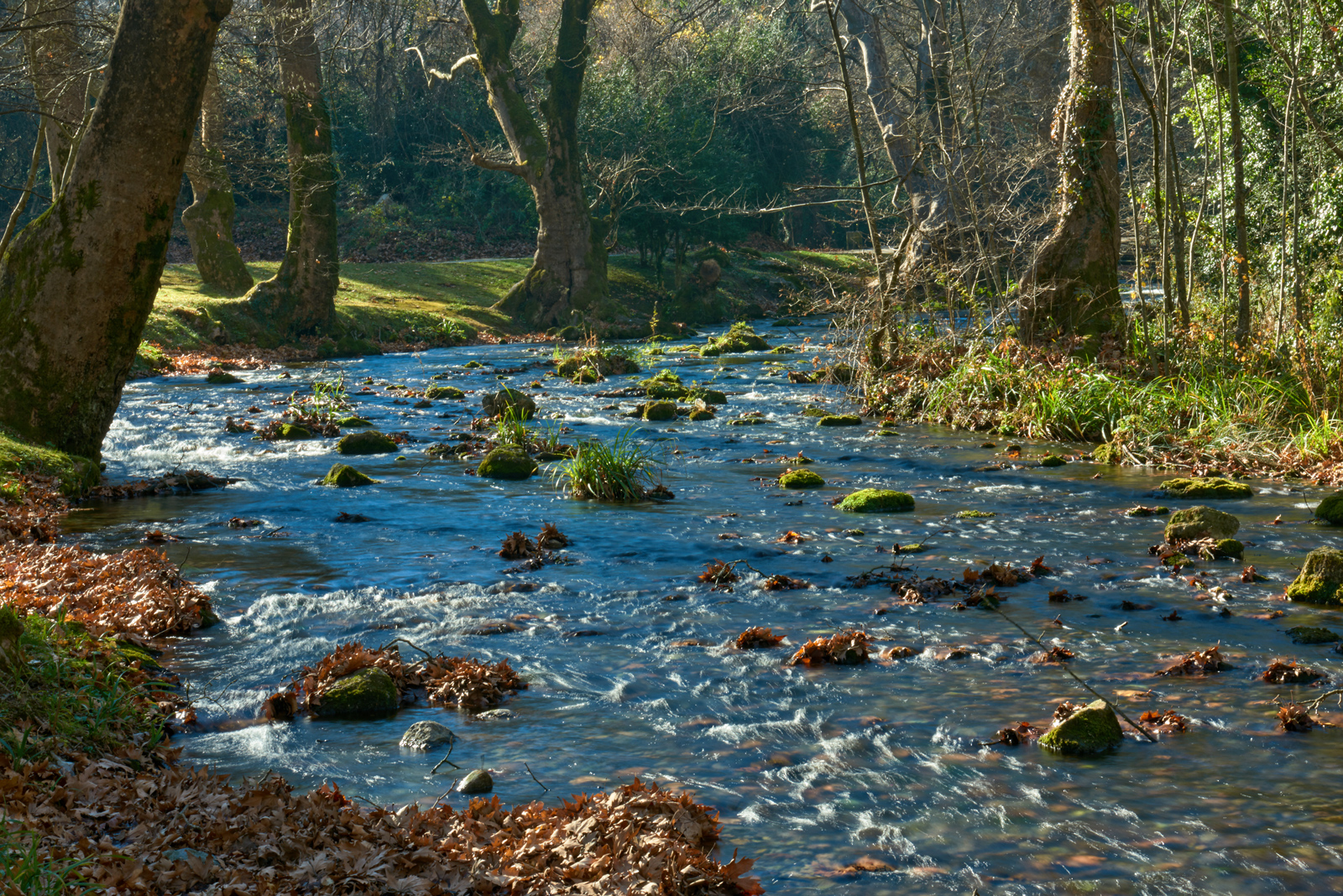 The Arapitsa River in Saint Nicholas' Grove Naoussa in Autumn